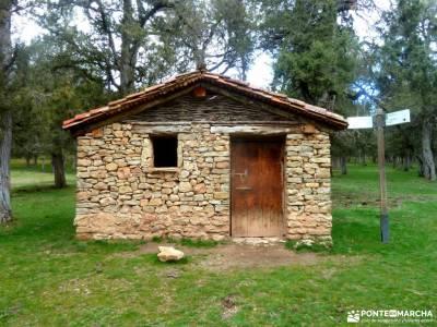 Fuentona y Sabinar de Calatañazor;viajes organizados baratos barrancas de burujón cascada del herv